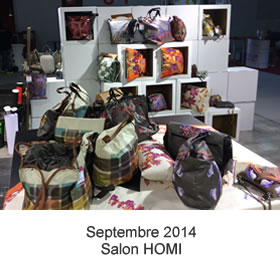 SALON 2014 Homi